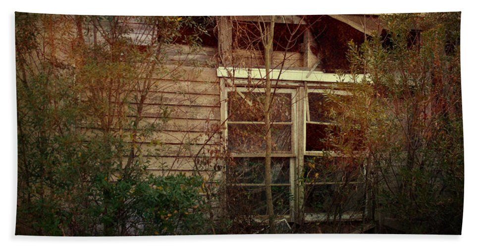 Nature Bath Sheet featuring the photograph Window To The Past by Paulette B Wright