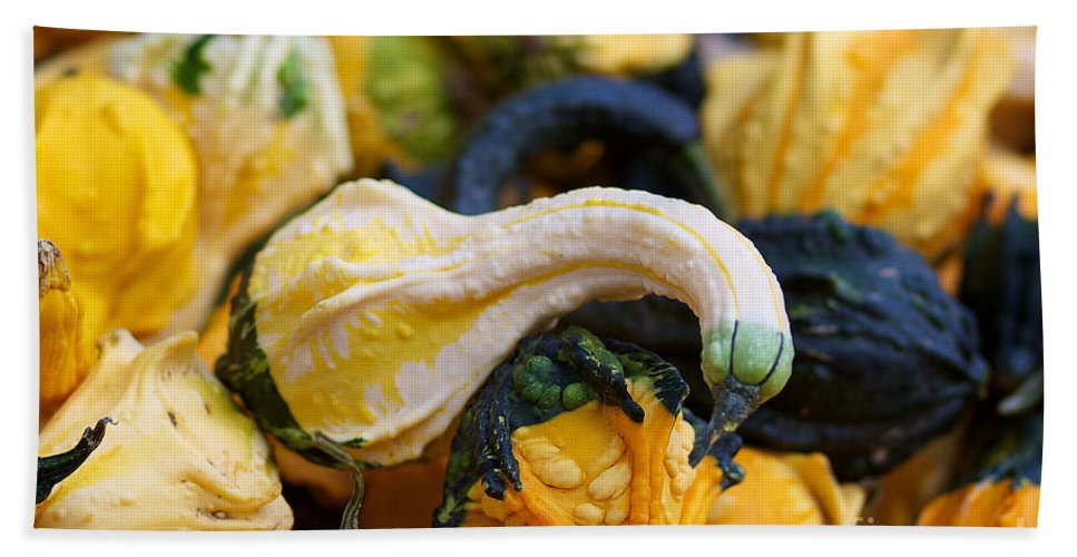 Fall Squash Photographs Bath Sheet featuring the photograph Winter Squash by Brooke Roby