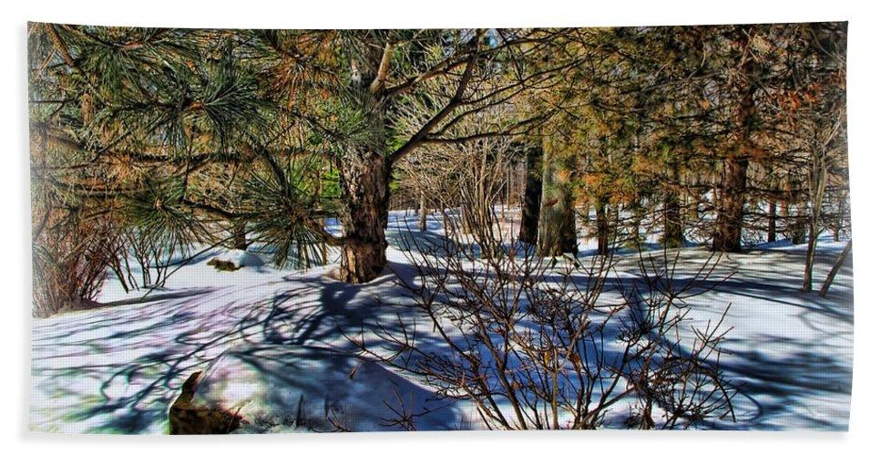 Winter Bath Sheet featuring the photograph Winter Sun by Joan Minchak