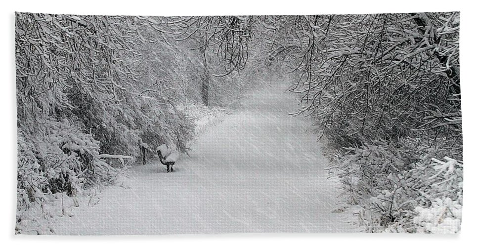 Snowing Bath Sheet featuring the photograph Winter's Trail by Elizabeth Winter