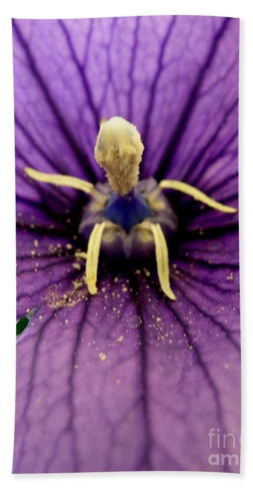 Flower Bath Sheet featuring the photograph Wondrous by Lainie Wrightson