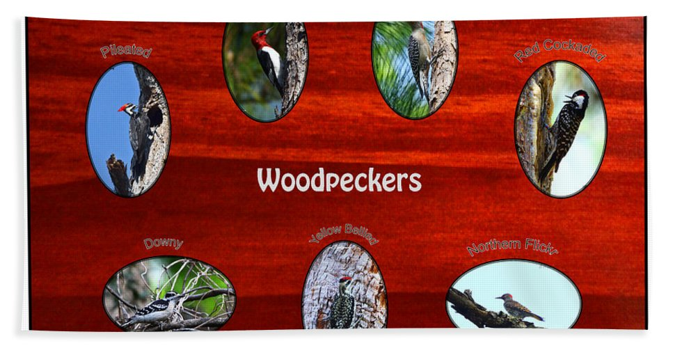 Woodpeckers Bath Towel featuring the photograph Woodpeckers by Barbara Bowen