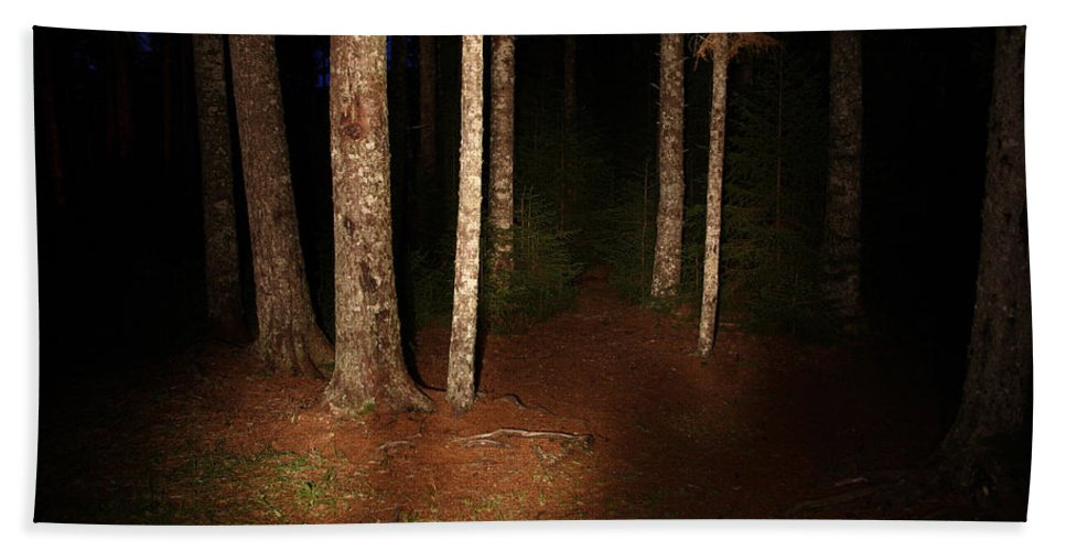 Night Hand Towel featuring the photograph Woods At Night by Ted Kinsman