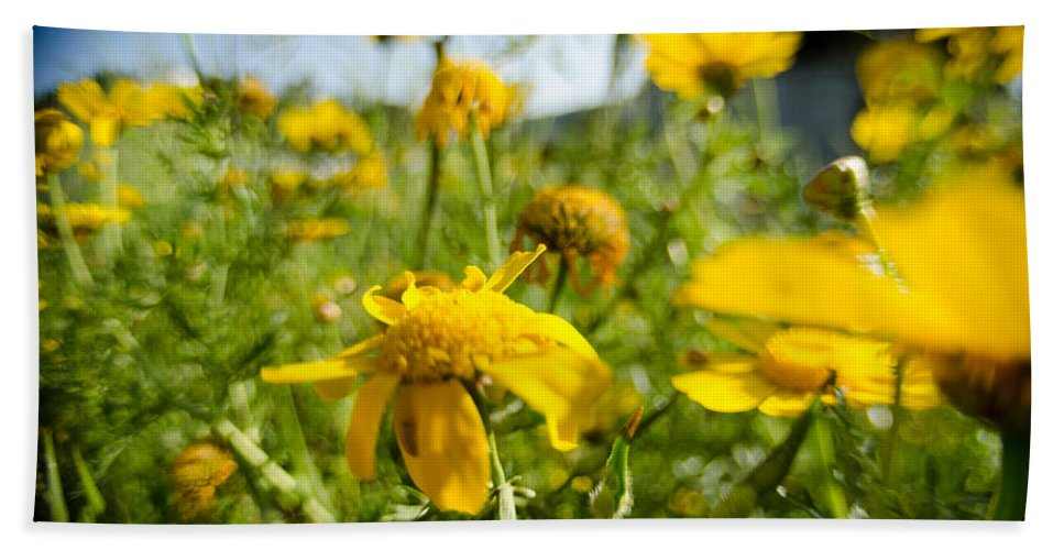 Background Hand Towel featuring the photograph Yellow Blooming Wildflowers by Michael Goyberg