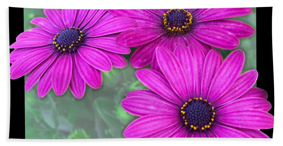 Nature Bath Sheet featuring the photograph Yellow Eyliner by Debbie Portwood