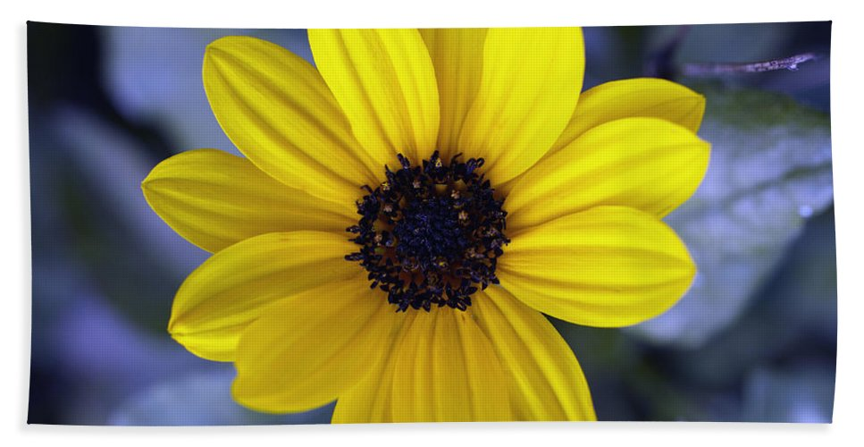 Abstract Bath Sheet featuring the photograph Yellow Flower 4 by Skip Nall
