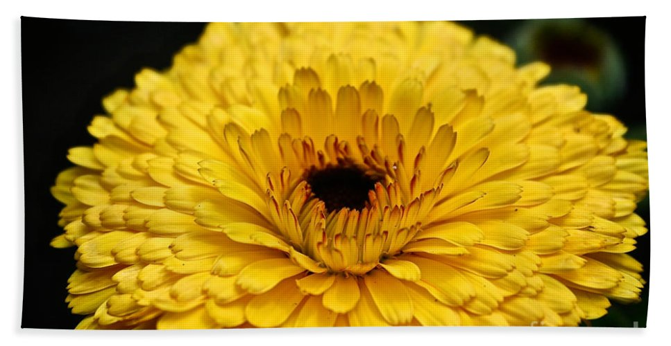Garden Bath Sheet featuring the photograph Yellow Gold by Susan Herber