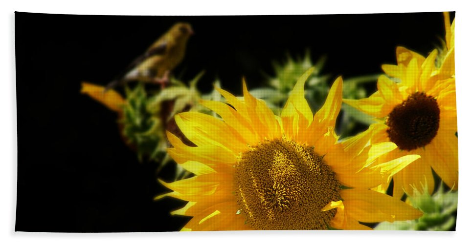 Floral Photographs Bath Sheet featuring the photograph Yellow Sunflowers by Ms Judi