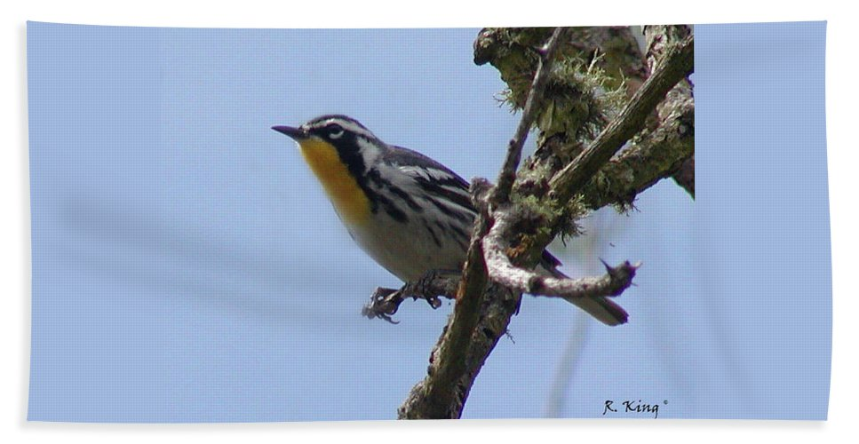 Roena King Hand Towel featuring the photograph Yellow-throated Warbler by Roena King