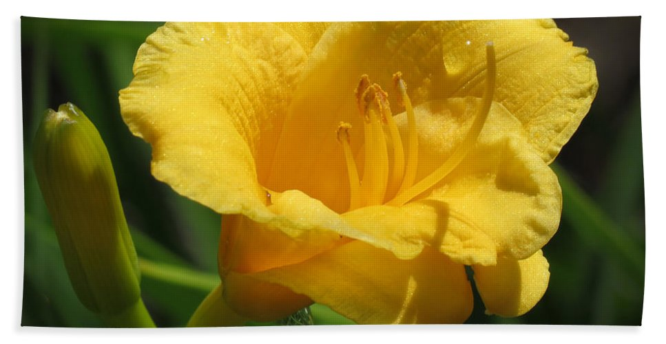 Daylily Hand Towel featuring the photograph Yellow Tiger Lily by Darleen Stry