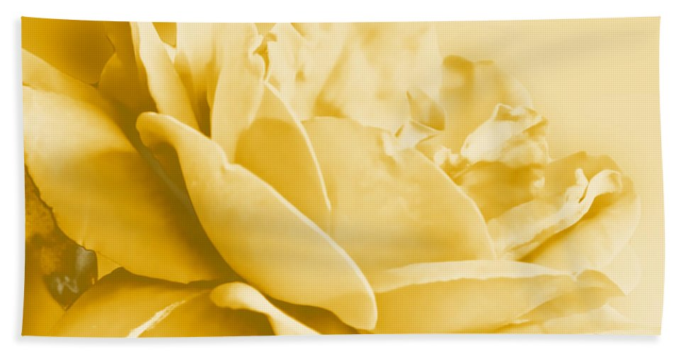 Nature Hand Towel featuring the photograph Yellow Tone Rose by Debbie Portwood