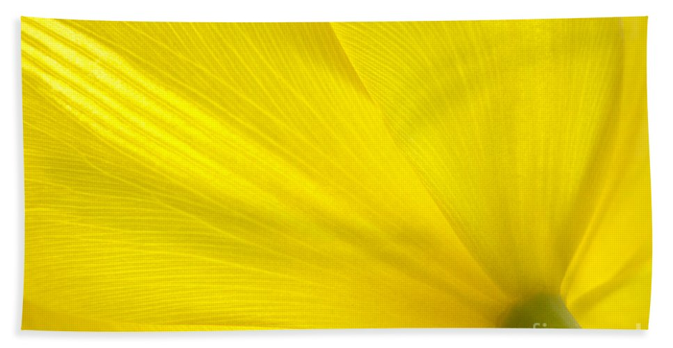 Tulip Bath Sheet featuring the photograph Yellow Tulip by Sharon Talson