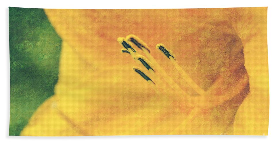 Yellow Flower Photographs Bath Sheet featuring the photograph Yellows - Textured by Aimelle