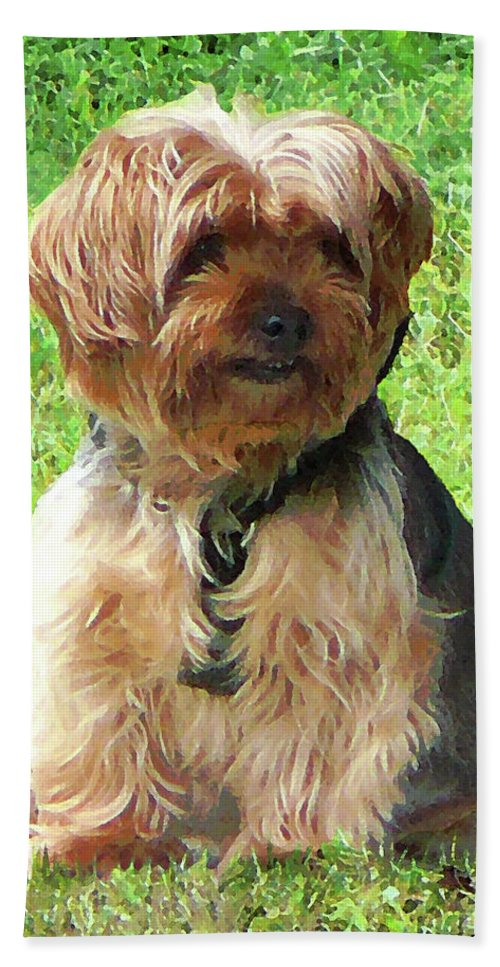 Dog Bath Sheet featuring the photograph Yorkshire Terrier In Park by Susan Savad