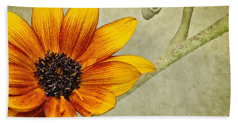 Flower Bath Sheet featuring the photograph You Are My Sunshine by Lois Bryan