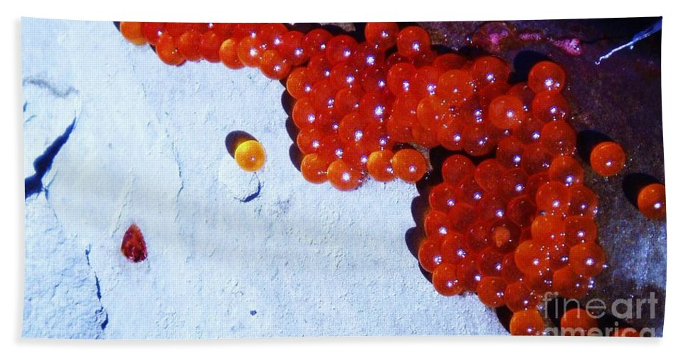 Photograph Fish Egg Lake Water Rock Hand Towel featuring the photograph Don't Kill Me. by Seon-Jeong Kim