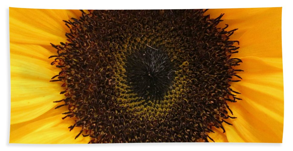 Daisy Bath Sheet featuring the photograph Florets by Rosita Larsson