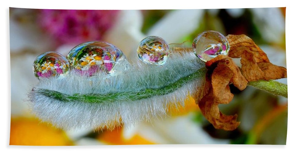 Friendly Bath Sheet featuring the photograph Friendly Company Of Rain Droplets On A Flower Cereal by Yuri Hope
