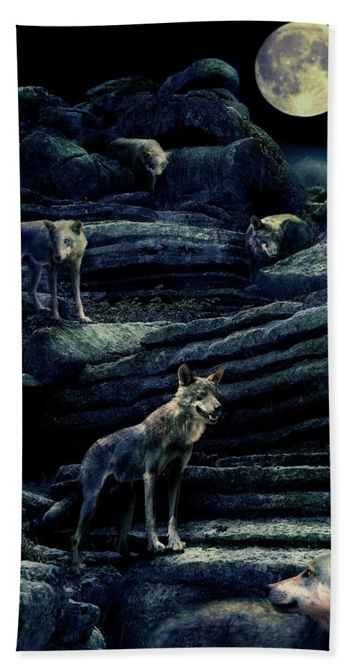 Wolf Hand Towel featuring the photograph Moonlit Wolf Pack by Mal Bray
