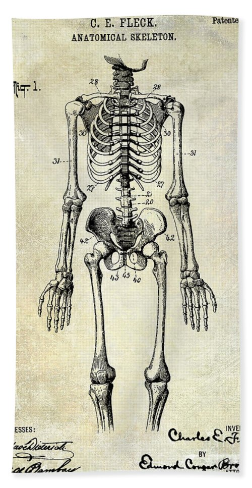 Skeleton Bath Sheet featuring the photograph 1911 Anatomical Skeleton Patent by Jon Neidert