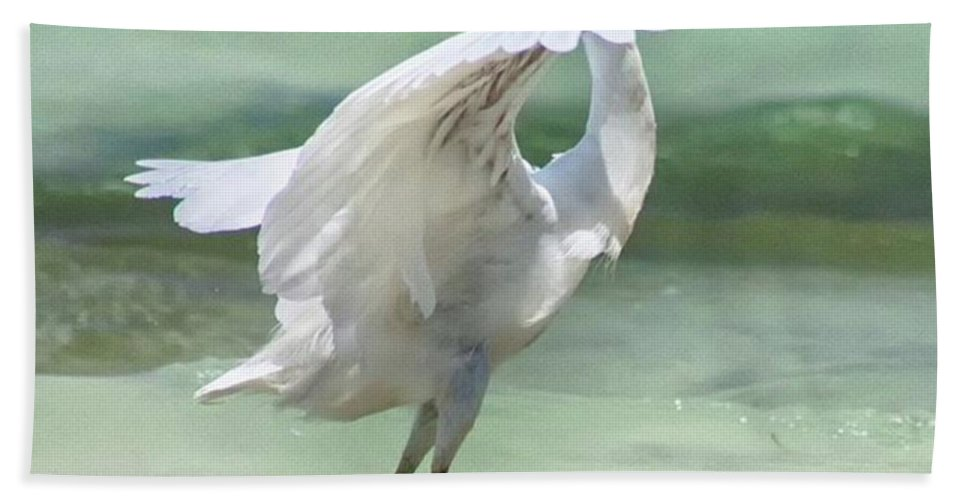 Egret Bath Towel featuring the photograph A Snowy Egret (egretta Thula) At Mahoe by John Edwards