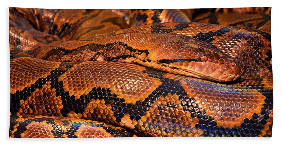 Snake Hand Towel featuring the digital art Anaconda by FL collection