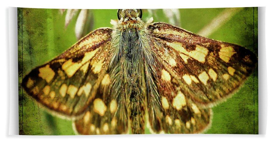 Butterflies Bath Sheet featuring the photograph Artic Skipper by Ingrid Smith-Johnsen