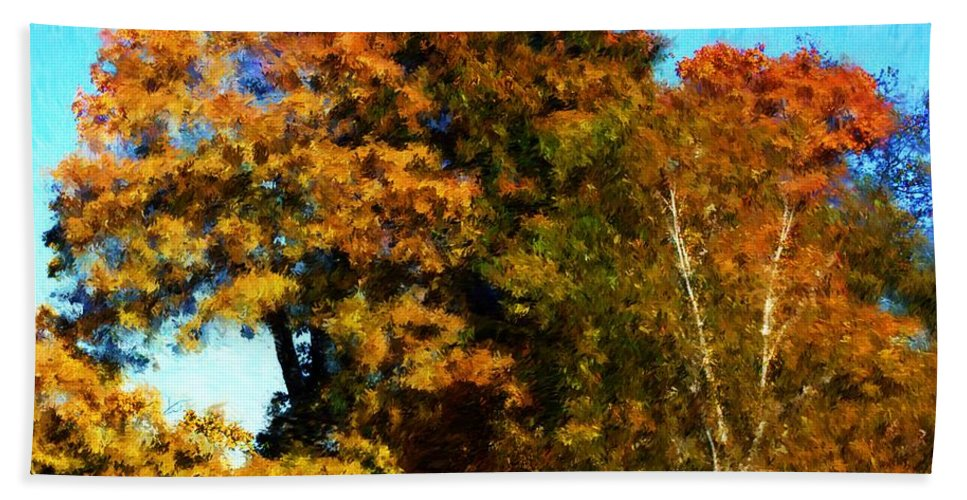 Digital Photography Hand Towel featuring the photograph Autumn Leaves by David Lane
