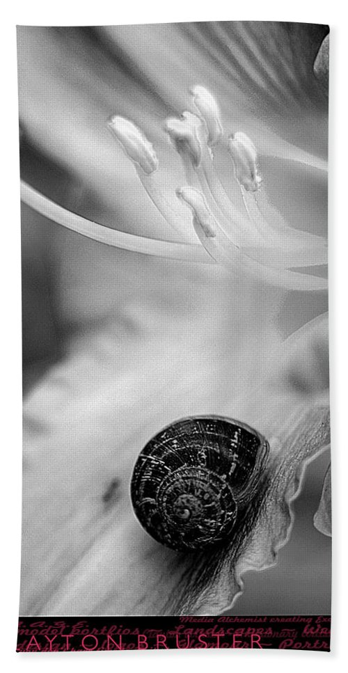 Clay Bath Towel featuring the photograph B And White Floral With Snail by Clayton Bruster