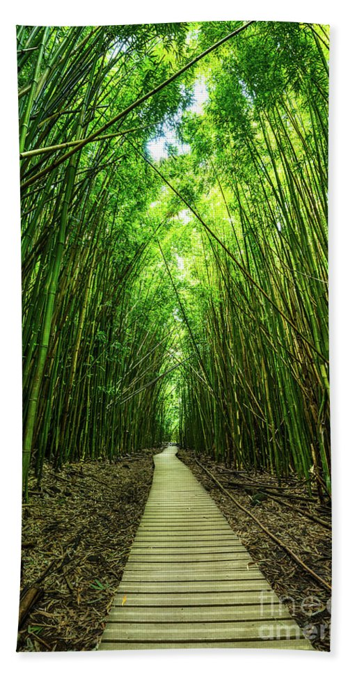 Bamboo Forest Hand Towel featuring the photograph Bamboo Forest by Jamie Pham