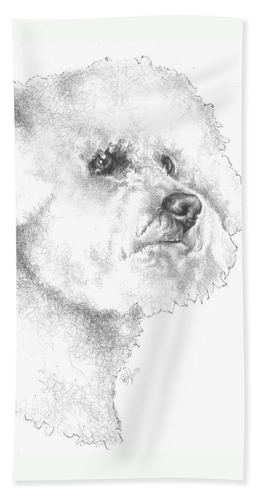 Non-sporting Hand Towel featuring the drawing Bichon Frise by Barbara Keith
