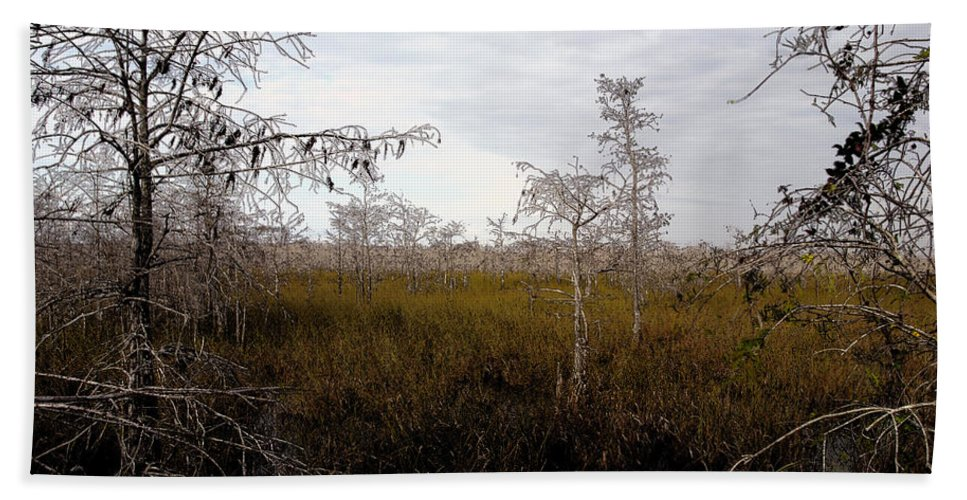 Big Cypress National Preserve Hand Towel featuring the painting Big Cypress by David Lee Thompson