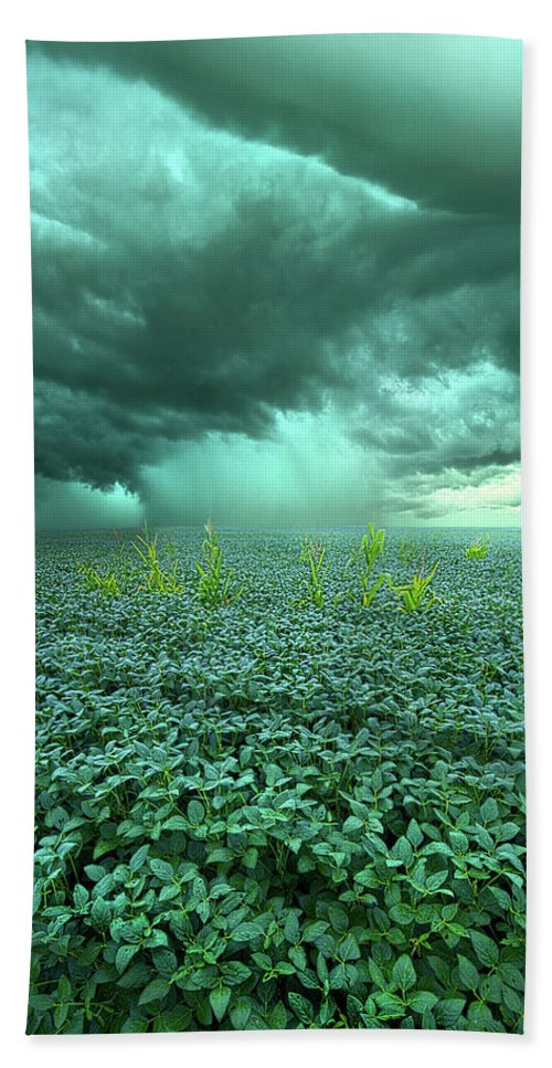 Summer Bath Towel featuring the photograph Blessings by Phil Koch