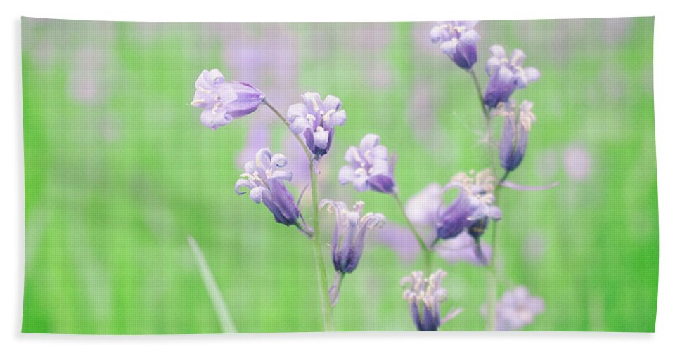 Spring Bath Towel featuring the photograph Bluebells by Martin Newman