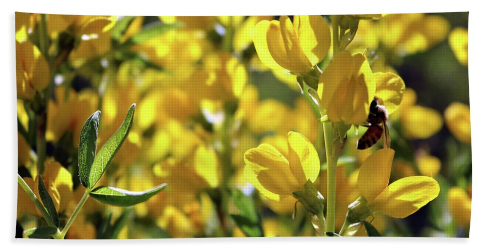 Yellow Spring Flower Bath Sheet featuring the photograph Busy Bee by Rosalyn Zacha