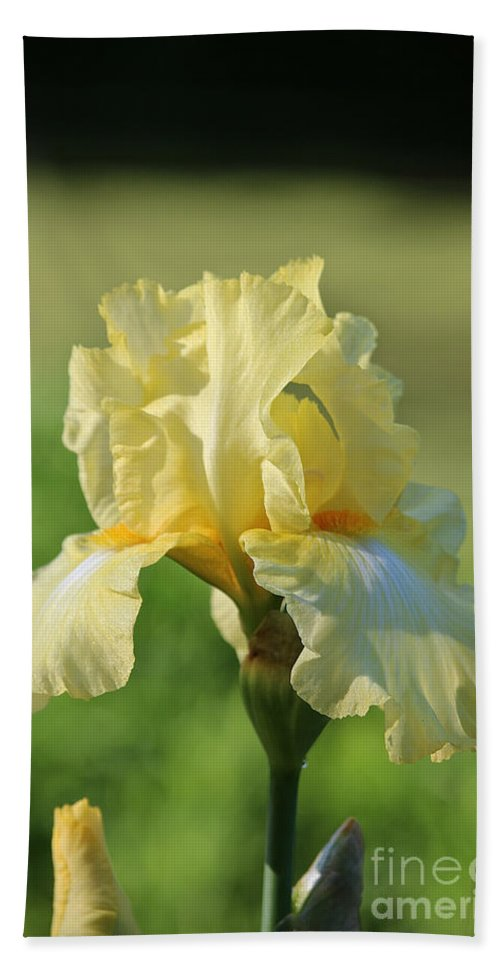 Flower Hand Towel featuring the photograph Buttery Soft by Susan Herber