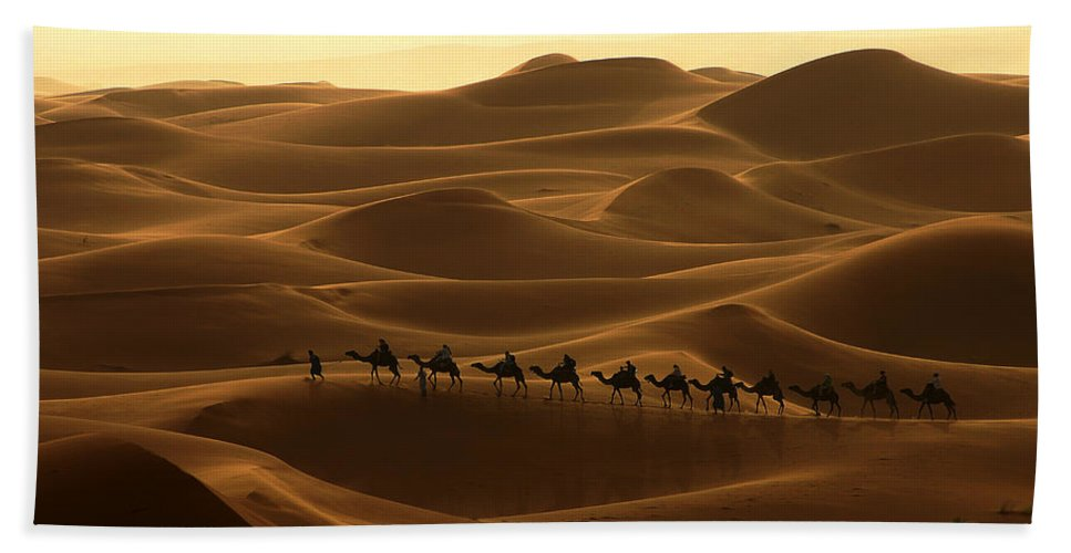 Camel Hand Towel featuring the photograph Camel Caravan In The Erg Chebbi Southern Morocco by Ralph A Ledergerber-Photography