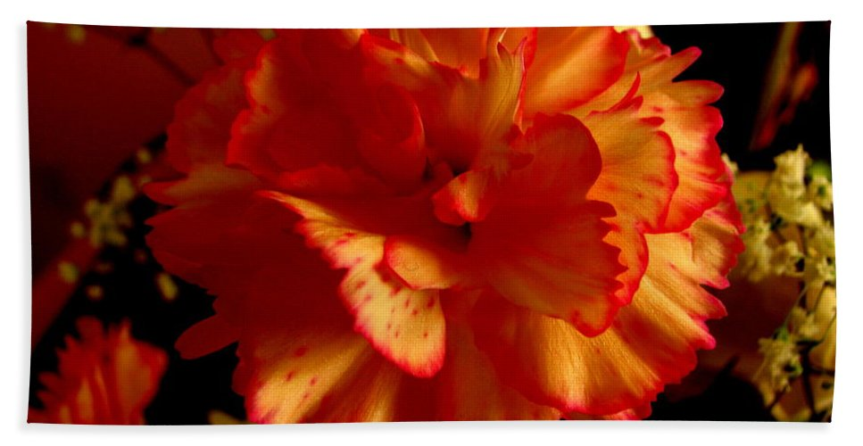 Patzer Bath Towel featuring the photograph Carnation by Greg Patzer