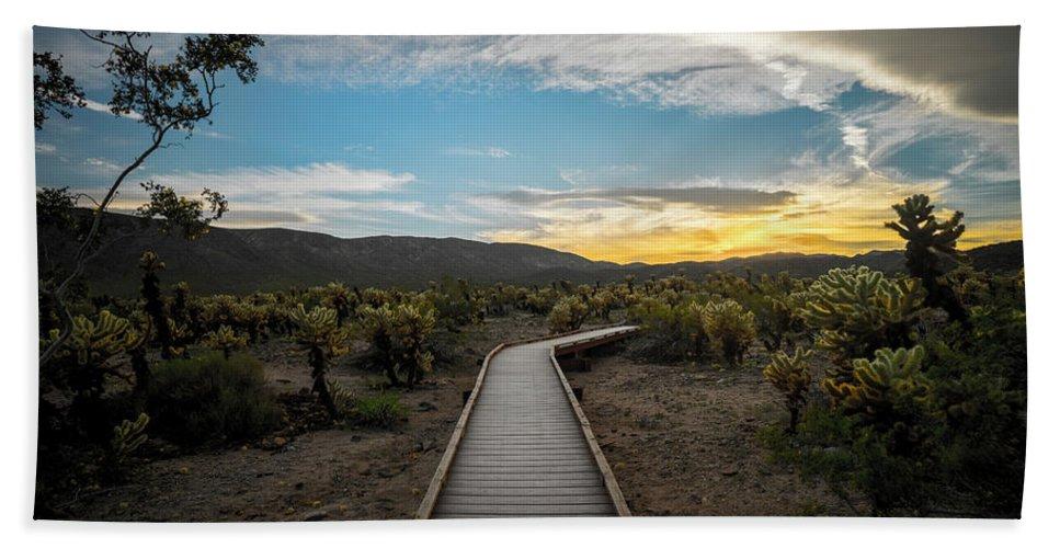 Arizona Bath Sheet featuring the photograph Cholla Cactus Garden, Joshua Tree National Park, Ca by Ryan Kelehar