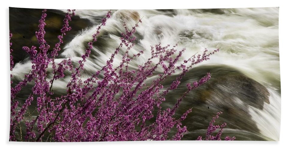 California Scenes Hand Towel featuring the photograph Cranberry Gulch by Norman Andrus