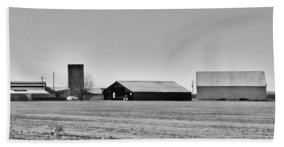 Dairy Farm Bath Sheet featuring the photograph Dairy Farm In Dixon by Peggy Leyva Conley