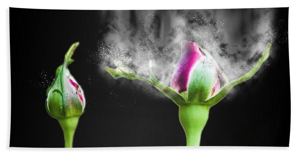 Delicate Bath Sheet featuring the photograph Digitally Manipulated Red Rose Bud by Humorous Quotes
