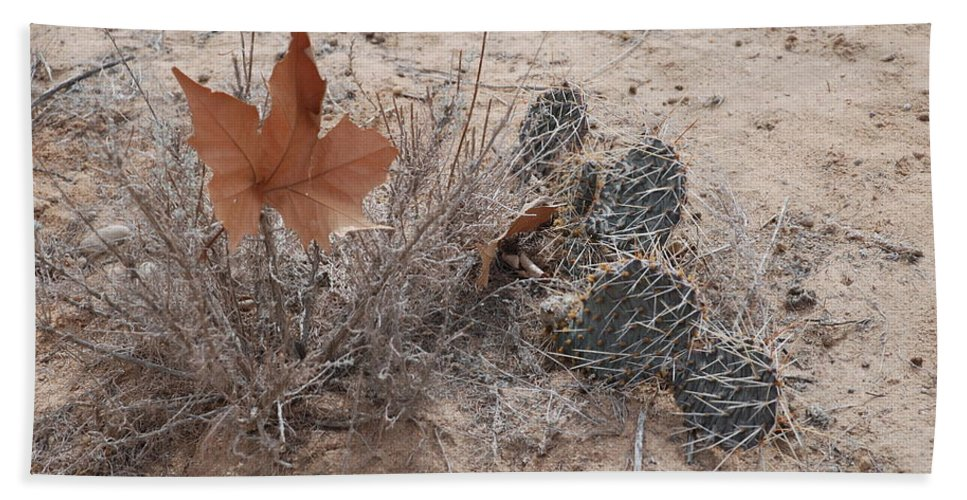 Desert Hand Towel featuring the photograph East Meets West by Rob Hans