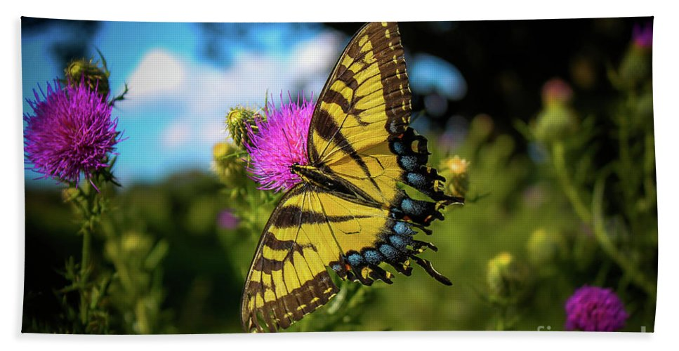 Outdoors Hand Towel featuring the photograph Eastern Tiger Swallowtail by Maria Costello