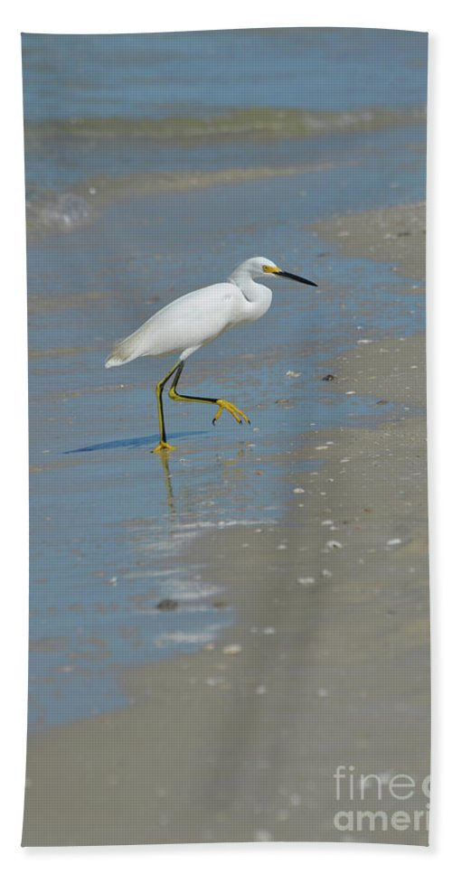 Egret Bath Sheet featuring the photograph Egret Walking Up The Beach by DejaVu Designs