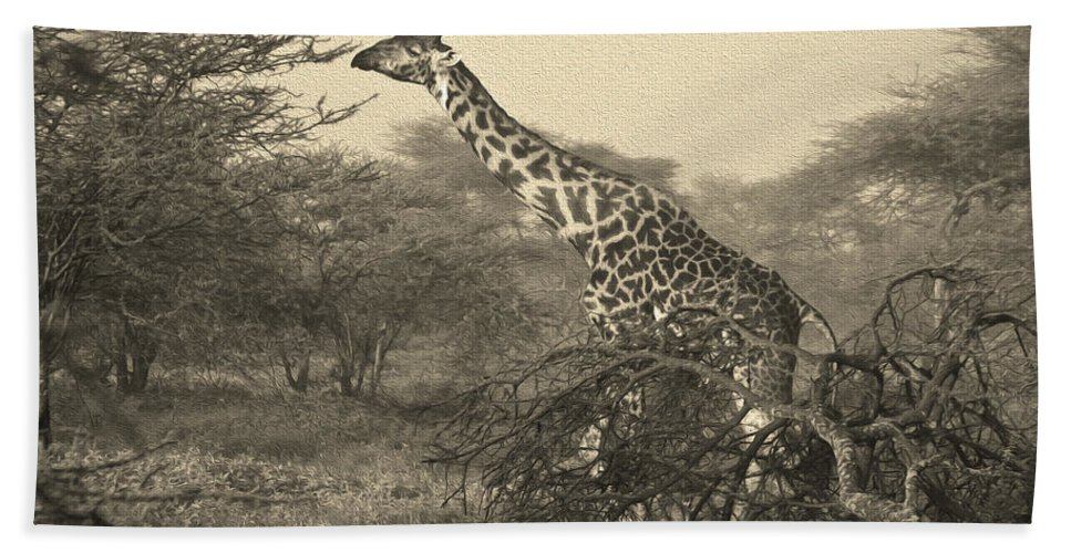 Africa Hand Towel featuring the photograph Emerging From The Morning Mist by Michele Burgess