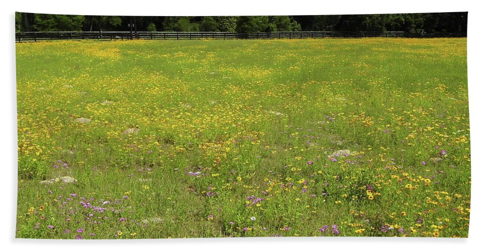Coreopsis Bath Sheet featuring the photograph Florida - Wildflowers by D Hackett