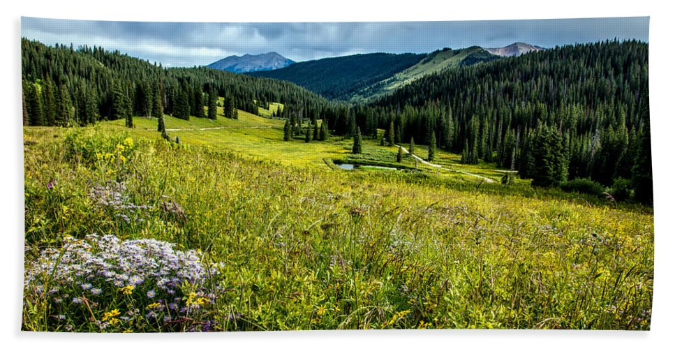 Hdr Hand Towel featuring the photograph Flowering Colorado Mountain Meadow by Mountain Dreams