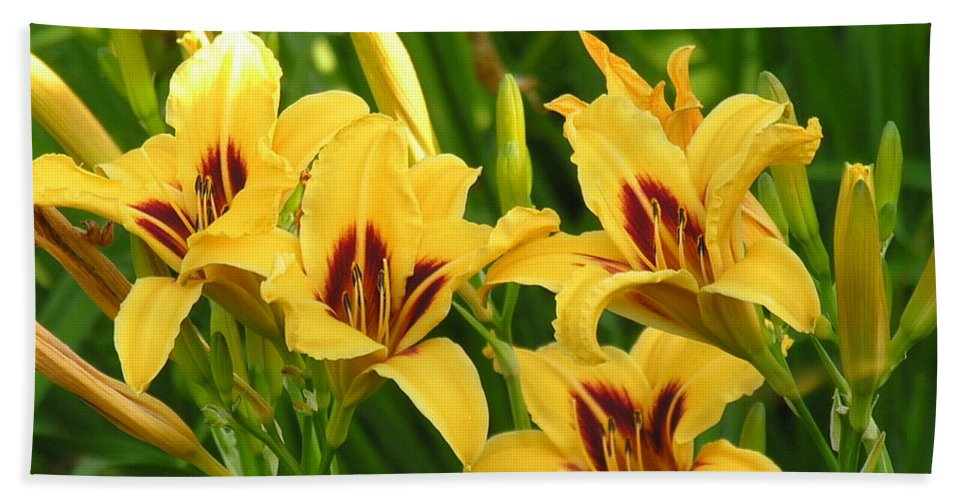 Yello Bath Towel featuring the photograph Flowers by Diane Greco-Lesser