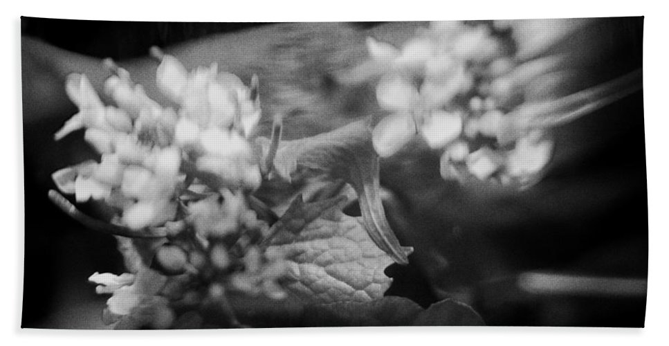 Blacj And White Bath Towel featuring the photograph flowers in Motion by Scott Wyatt
